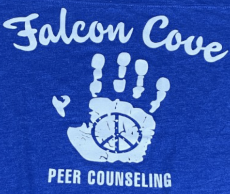 Falcon Cove Peer Counseling